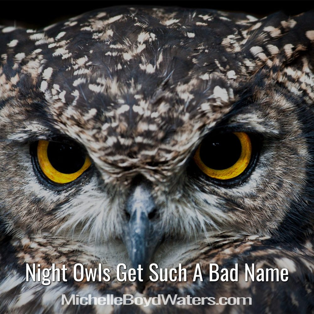 Night Owls Get Such A Bad Name